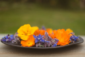 Edible-Flowers-From-Fernhill House Hotel