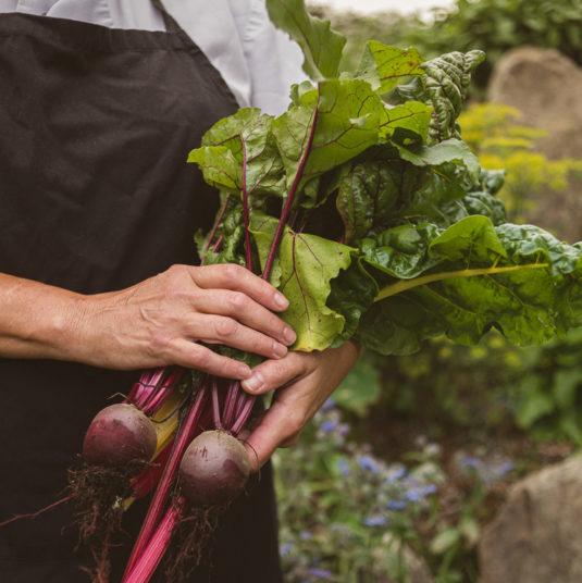 Fernhill-House-Hotel-Vegetables-